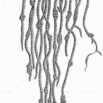 Knotted Cords from Meyers Konversationslexikon of 1888